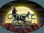 Игровой автомат Coyote Moon
